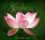 CD Lotus